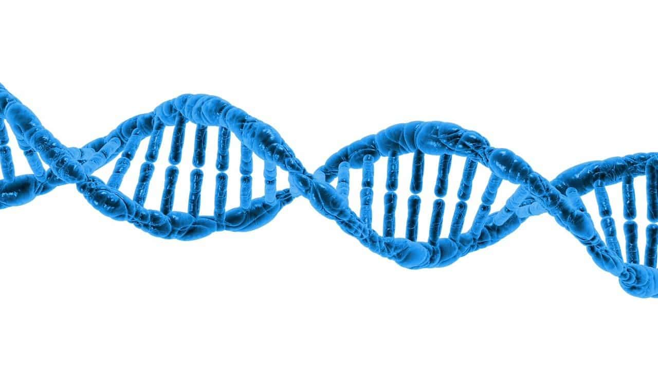DNA sequencing and biostatistical analysis