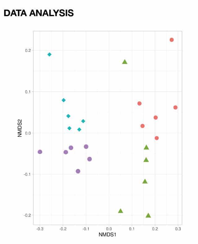 Example of data analysis of animal models
